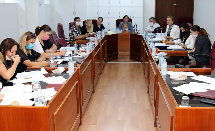 Kamu Sağlık İşleri Komitesi toplandı