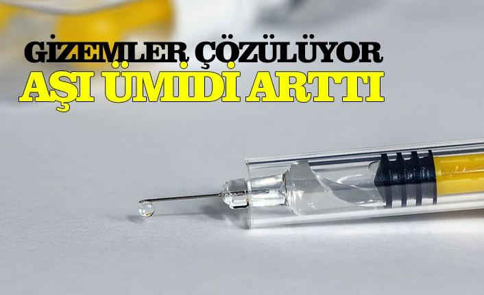 Geniş çaplı antikor araştırması Kovid-19 aşısı için ümidi artırdı
