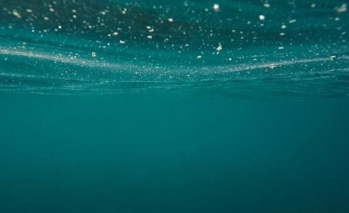 2020 'Sessiz Okyanus Yılı' ilan edildi