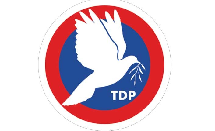 """TDP: """"Gelecek Adına Endişeliyiz"""""""