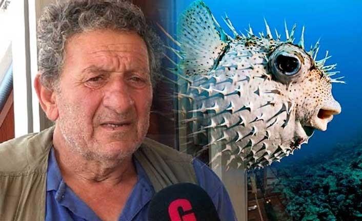 """""""Balıkçıların en büyük derdi balon balığı ve aslan balığı"""""""