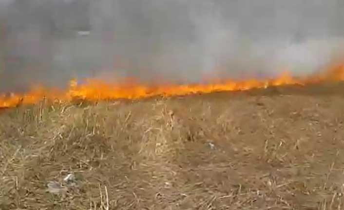 Gazimağusa ve Güzelyurt'ta yangın!