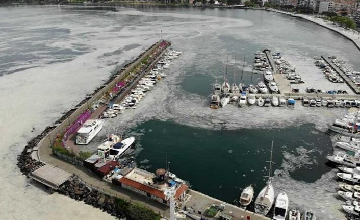 Marmara'yı kirleten 16 işletme kapatıldı