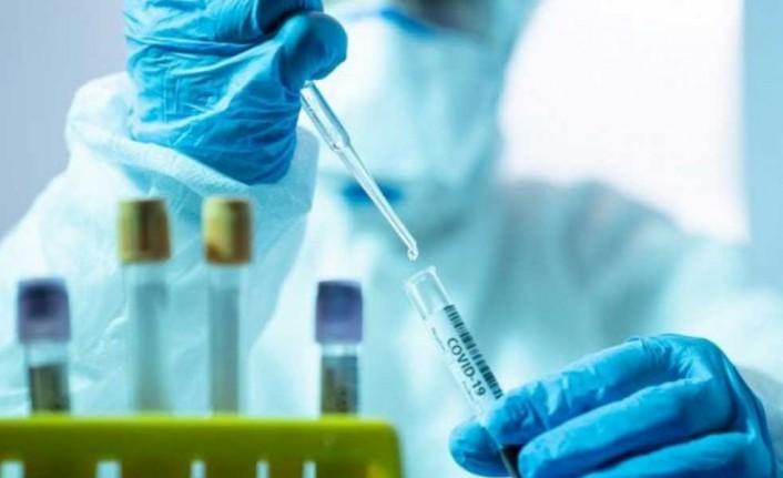 Salgın aşılarının kısırlığa yol açmadığı kanıtlandı