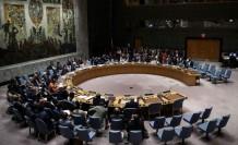 BM Güvenlik Konseyi'nin yeni geçici 5 üyesi belirlendi