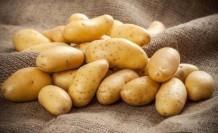 Kuzucuk Köyü İçin Patates Don Zararı Askı Listeleri Hazırlandı
