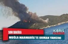 Son Dakika: Muğla Marmaris'te orman yangını