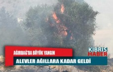 Ağırdağ'da büyük yangın