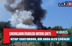 Marmaris'teki yangını başlatan çocukların ifadeleri ortaya çıktı