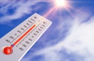 Hava sıcaklıkları iç kesimlerde 39, sahillerde...