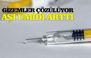 Geniş çaplı antikor araştırması Kovid-19 aşısı...
