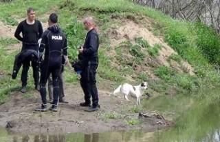 Nehirde aranan yaşlı adamın beslediği köpek,...