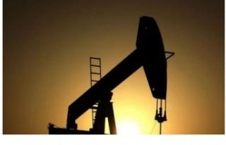 OPEC+ ülkeleri, günlük petrol üretimini kademeli...