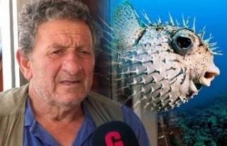 """""""Balıkçıların en büyük derdi balon balığı..."""