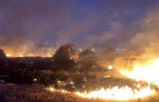 Lefkoşa Ve Ercan Bölgesinde Yangın