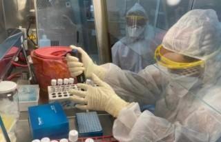 Sinovac araştırması: Covid-19 sonrası aşı antikoru...
