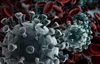 Türkiye'de 25 bin 980 kişinin koronavirüs...