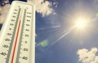BM raporu: Sıcak hava dalgalarının milyonlarca...