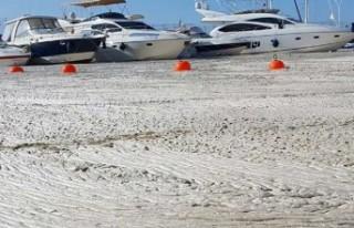 Deniz salyası gitgide artıyor: 'Bütün marina...