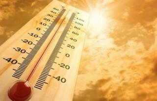 Hava Sıcaklığının 42 Dereceye Kadar Çıkması...