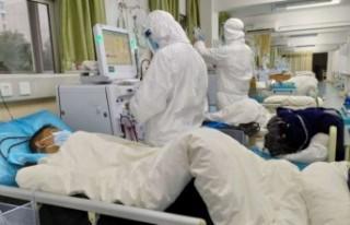 Türkiye'de koronavirüs vaka sayıları düne...