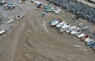 Türkiye'nin en büyük deniz temizliği seferberliği...