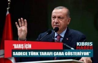 Erdoğan: Barış için sadece Türk tarafı çaba...