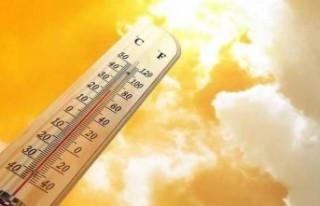 Hava sıcaklığı iç kesimlerde 36 – 39; sahillerde...