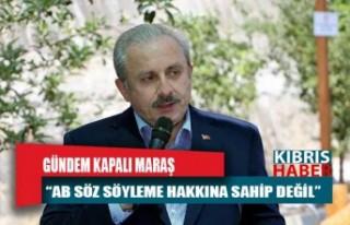 TBMM Başkanı Şentop: AB, Kapalı Maraş ile ilgili...