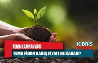 TEMA Vakfı fidan bağış kampanyası: TEMA fidan...