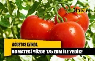 AĞUSTOS'TA DOMATESİ 'YÜZDE 175 ZAMLA'...