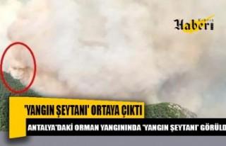 Antalya'daki orman yangınında 'yangın...