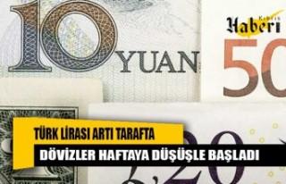 Türk Lirası artı tarafta, dövizler haftaya düşüşle...