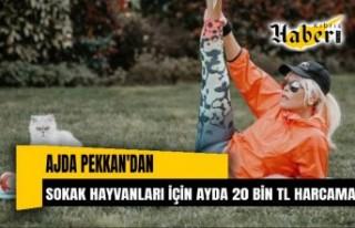 Ajda Pekkan'dan Sokak Hayvanlarına Ayda 20 Bin...
