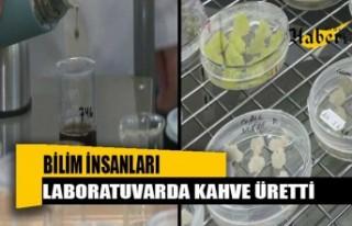 Bilim insanları laboratuvarda kahve üretti: Tadı...
