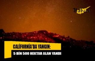 California'da yangın: 5 bin 500 hektar alan...