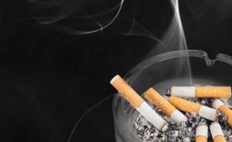 Her yıl yaklaşık 8,5 milyon insan tütüne bağlı nedenlerle ölüyor