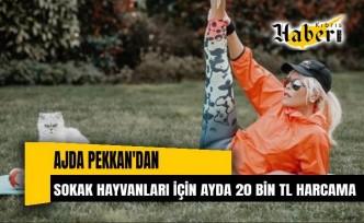 Ajda Pekkan'dan Sokak Hayvanlarına Ayda 20 Bin Liralık Harcama