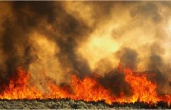 Platres'te yangın