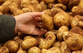 Patates üreticileri ürün bedellerini 28 Haziran'dan itibaren peşin olarak alabilecek