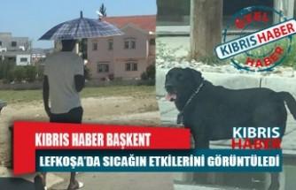 Kıbrıs Haber Başkent Lefkoşa'dan sıcağın etkilerini görüntüledi