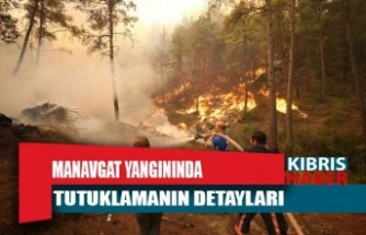 Manavgat yangınında tutuklamanın detayları