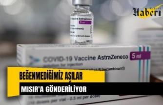 Beğenmediğimiz aşılar Mısır'a gönderiliyor