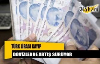 Türk Lirası kayıp, dövizlerde artış sürüyor