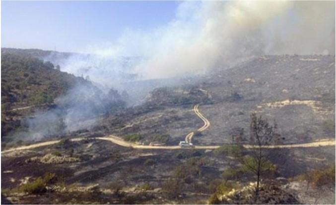 Limasol - Baf sınırında çıkan yangın kontrol altına alınamıyor