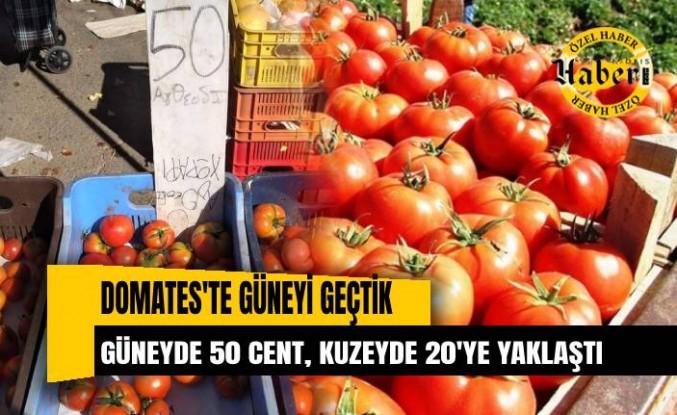 Güney'de 50 cent'e satılan domates, kuzeyde 20 TL'ye dayandı
