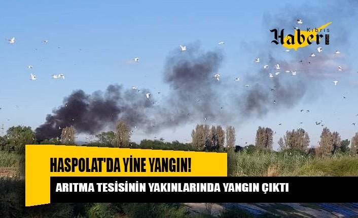 Haspolat'ta arıtma tesisinin yakınlarındaki bir noktada yangın çıktı